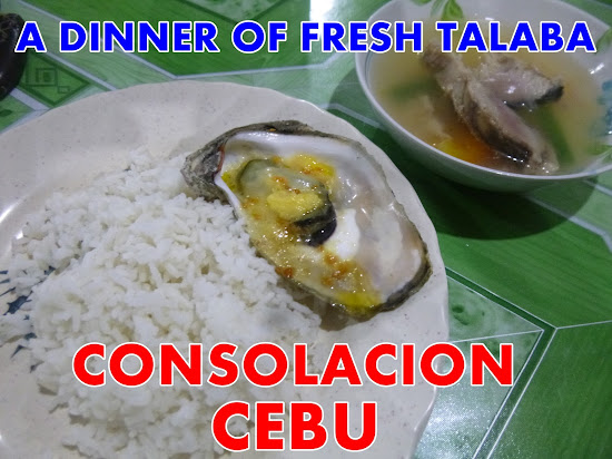 A Dinner of Fresh Talaba in Consolacion, Cebu