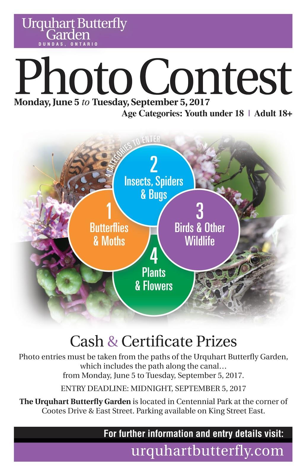 pollinators paradise project 2017