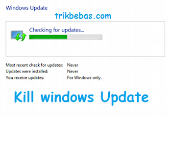 Windows Update Otomatis Windows 7 8 10