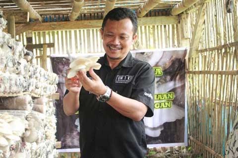 mahasiswa uniku budi daya jamur tiram