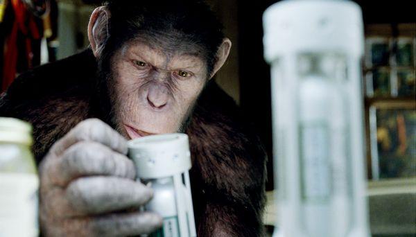 La Planète des singes les origines César
