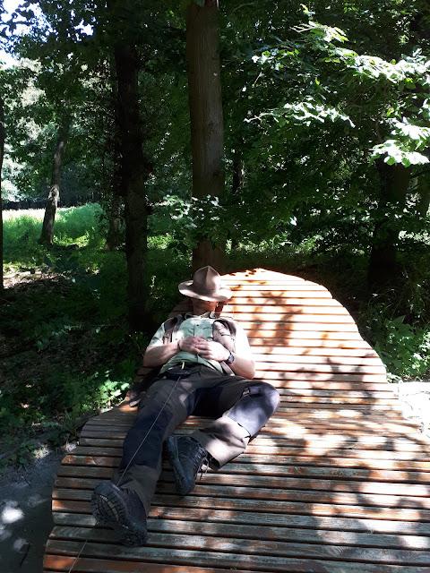ranger napping in Nationalpark Eifel