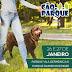 Primeiro Cão no Parque e na Vila de 2019 ocorre neste fim de semana