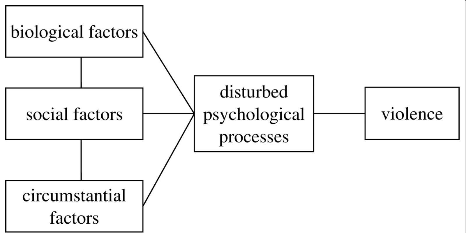 Evolución y Neurociencias: El Paradigma de Género no explica la ...
