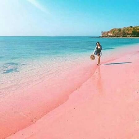 A brusque flying from Bali takes y'all to Lombok amongst its tranquility arts and crafts villages as well as stunning tr BeachesinBali; The Uniqueness of the Beach Pink Lombok