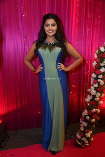 Anupama Parameswaran in lovely shaded gown ~  Exclusive 38.JPG