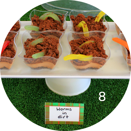 Worms in dirt! Fun novelty kids party food. Love That Party.