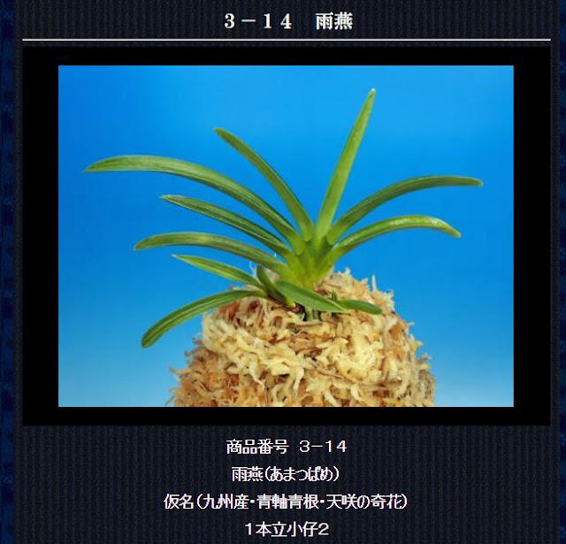 http://www.fuuran.jp/3-14.html
