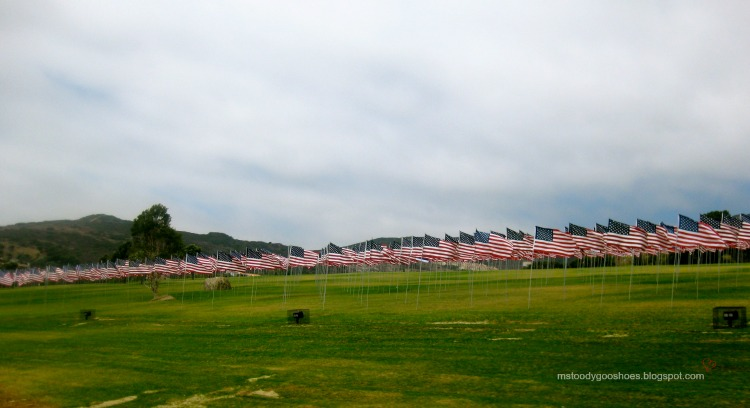 Waves Of Flags, Pepperdine University | Ms. Toody Goo Shoes #americanflag