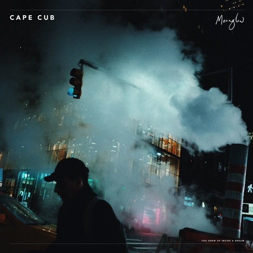 Cape Cub Unveil New Single 'Moonglow'