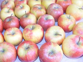 fructe, ionatane, mere romanesti, fructe romanesti, retete cu mere, preparate din mere, bauturi din mere, retete,