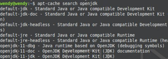 Cara Install JRE (Java Runtime Environment) Di Linux Mint