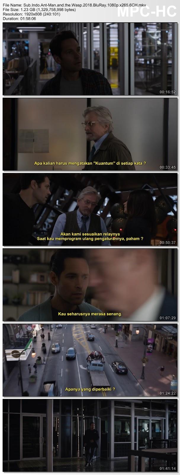 Screenshots Download Homem-Formiga e a Vespa (2018) BluRay 480p & 3GP Subtitle Indonesia