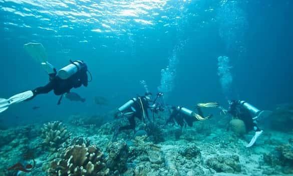 aktivitas wisata gotravela indonesia nusa penida bali