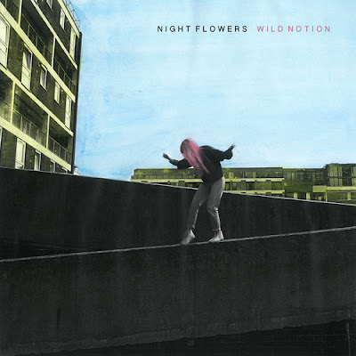 Night Flowers - Wild Notion