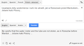 screenshot Google Translate