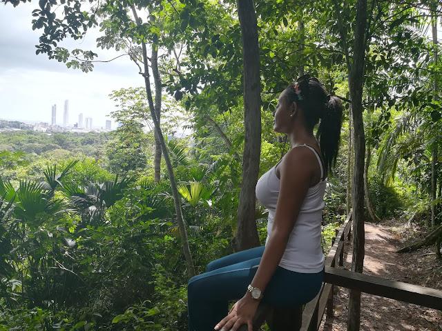 El Parque Metropolitano: senderismo en la ciudad de Panamá