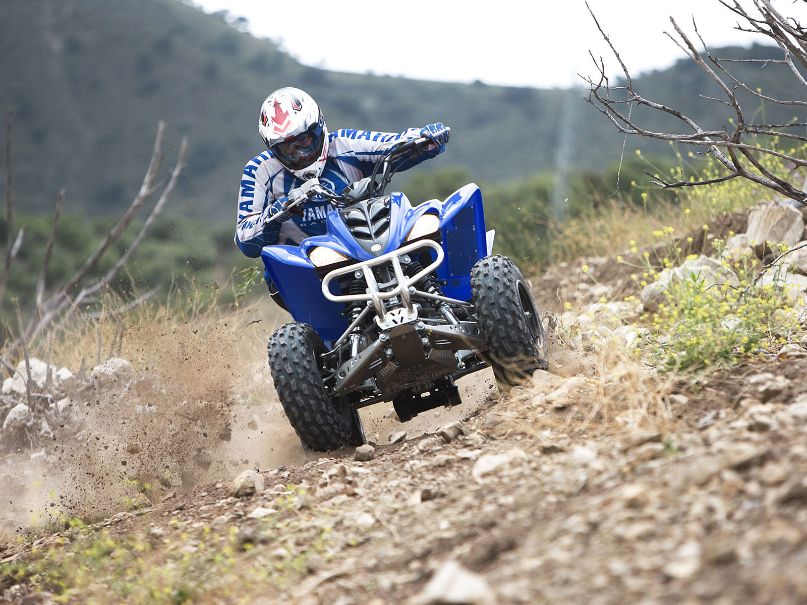 2009 YAMAHA Raptor 350. Click Thumbnail to download (size 1600 x 1200  pixels). • Based ...
