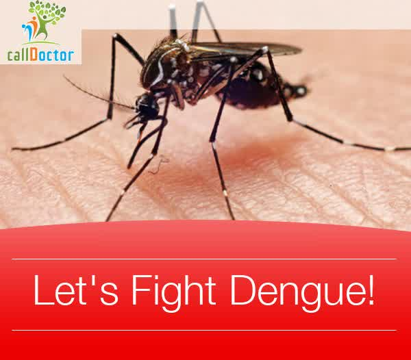 Symptoms of Dengue Hemorrhagic Fever And First Aid