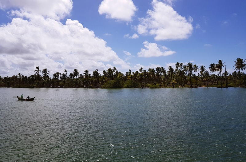 Passeio de Barco em Piaçabuçu, Foz do Rio São Francisco