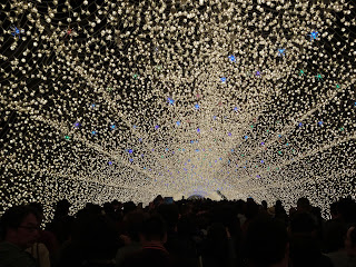 Nabana no Sato illuminations