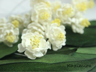Узнай свой цветок с помощью нумерологии http://parafraz.space/, http://deti.parafraz.space/, http://eda.parafraz.space/, http://handmade.parafraz.space/, http://prazdnichnymir.ru/, http://psy.parafraz.space/