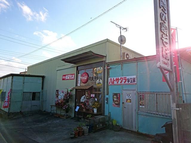 昭和空間 門の家の写真