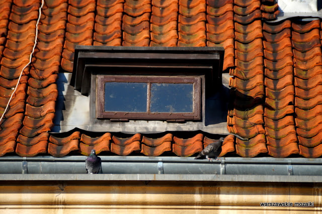 Warszawa Warsaw kamienica architektura Trakt Królewski  dach