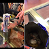Man finds a dead mouse in his can of Red Bull after drinking everything