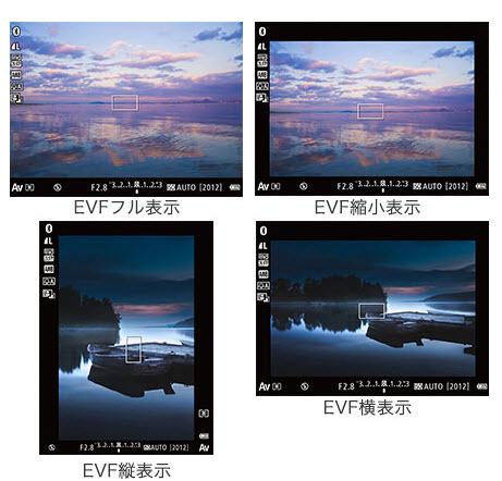 4 種 EVF 顯示方式