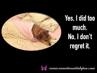 Image: dog in bed asleep. Text: Yes, I did too much. No, I don't regret it.