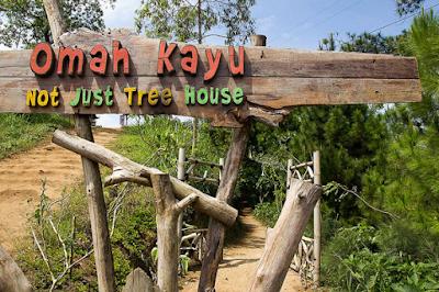 Wisata Omah Kayu Malang, Wisata Menarik Dengan Alam Eksotis Di Batu Malang