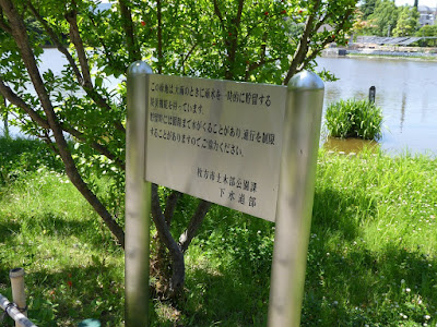 枚方市・市民の森(鏡伝池緑地)