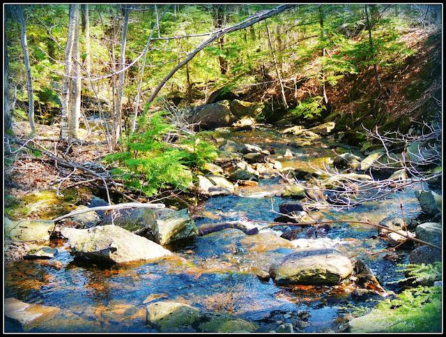 Riachuelo del Monadnock State Park (NH)