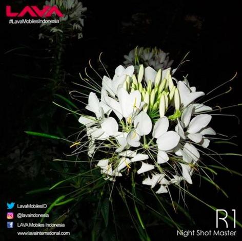 hasil kamera Lava R1