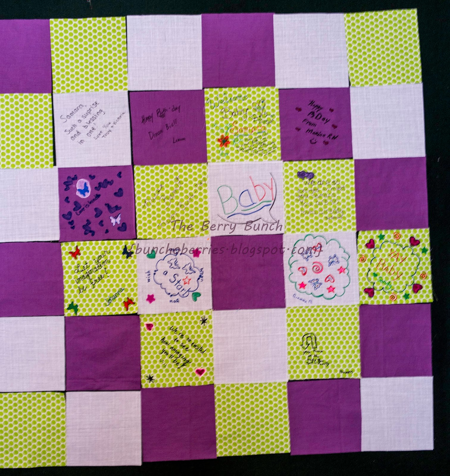 The Berry Bunch: 2014 Finish-A-Long: Baby Shower Quilt