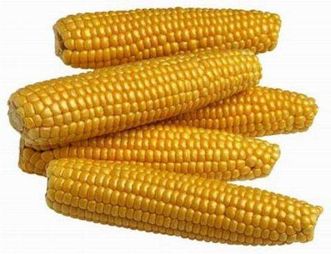 The health benefits of corn