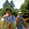 what do scarecrows have to do with food?