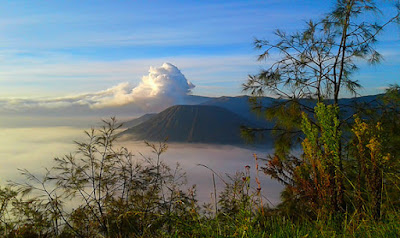 Sunrise bromo, ijen tour from bali, bromo tour from surabaya, ijen bromo from banyuwangi, ijen bromo from bali.