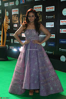 Parul Yadav in Stunning Purple Sleeveless Transparent Gown at IIFA Utsavam Awards 2017  Day 2  Exclusive 27.JPG