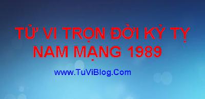 TU VI TRON DOI KY TY 1989