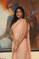 Eesha Rebba in beautiful peach saree at Darshakudu pre release ~  Exclusive Celebrities Galleries 048.JPG