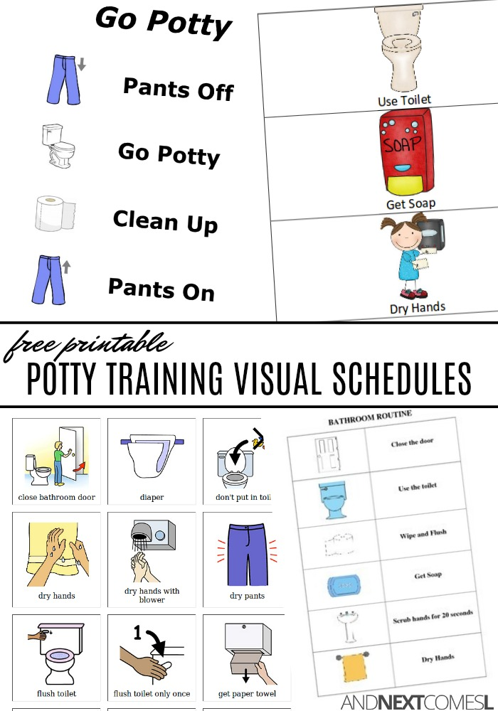 Free printable potty training visual schedules for kids also and next comes  rh andnextcomesl