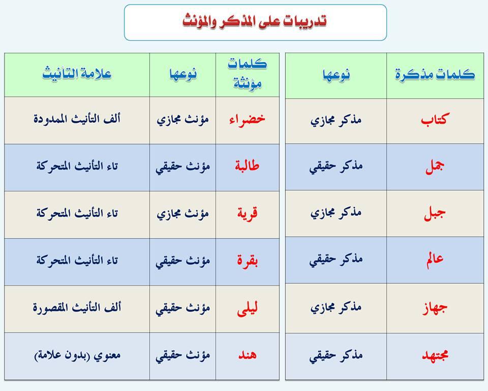 بالصور قواعد اللغة العربية للمبتدئين , تعليم قواعد اللغة العربية , شرح مختصر في قواعد اللغة العربية 13.jpg
