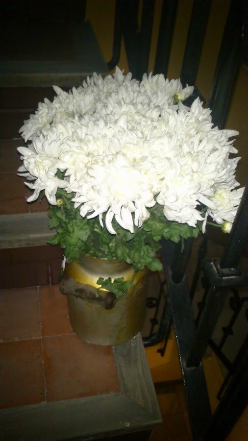 aguantar-ramo-flores-mas-tiempo-frescas