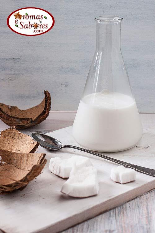 Leite de coco caseiro