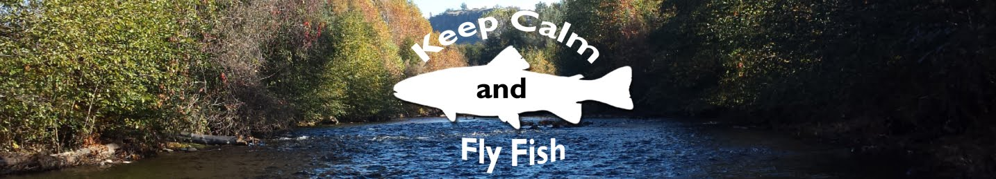 Keep Calm and Fly Fish