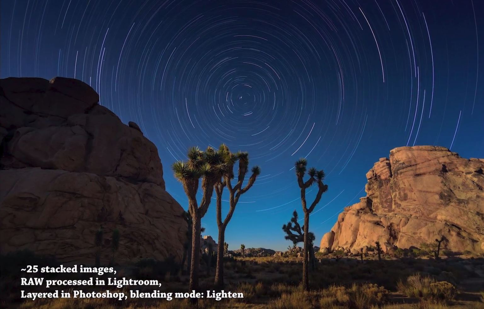 Astrophotography Tips: How to Photograph Star Trails