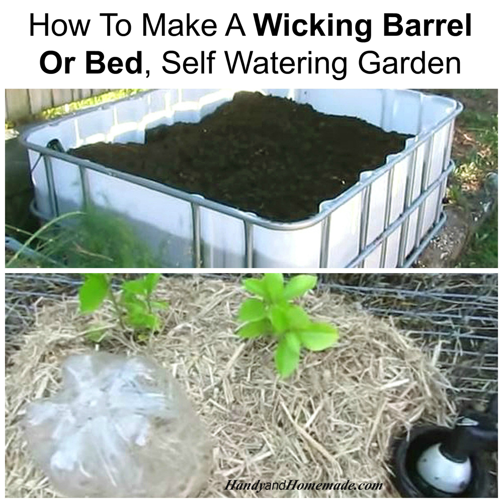 How To Make A Wicking Barrel Or Bed, Self Watering Garden