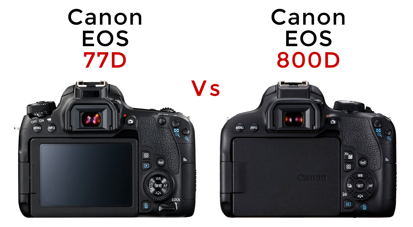 Park Cameras Blog: Canon EOS 77D vs Canon EOS 800D Review